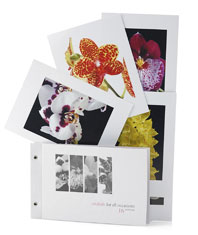 Orchid Postcards 16 volume 1