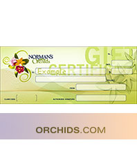 Orchids.com Gift Certificate